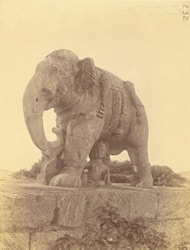 Elephant statue near the gajadvara, Surya Temple or Black Pagoda, Konarka 1003351
